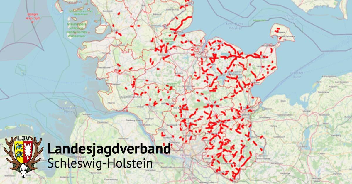 wuidi-pr-news-kooperation-mit-ljv-schleswig-holstein.jpg
