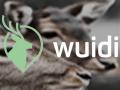 wuidi-button-1.jpg